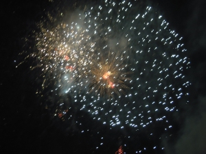 Fireworks 2010 005