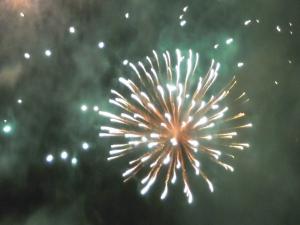 Fireworks 2010 006