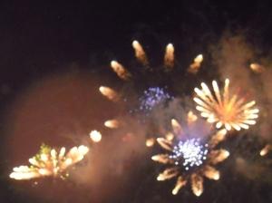 Fireworks 2010 008
