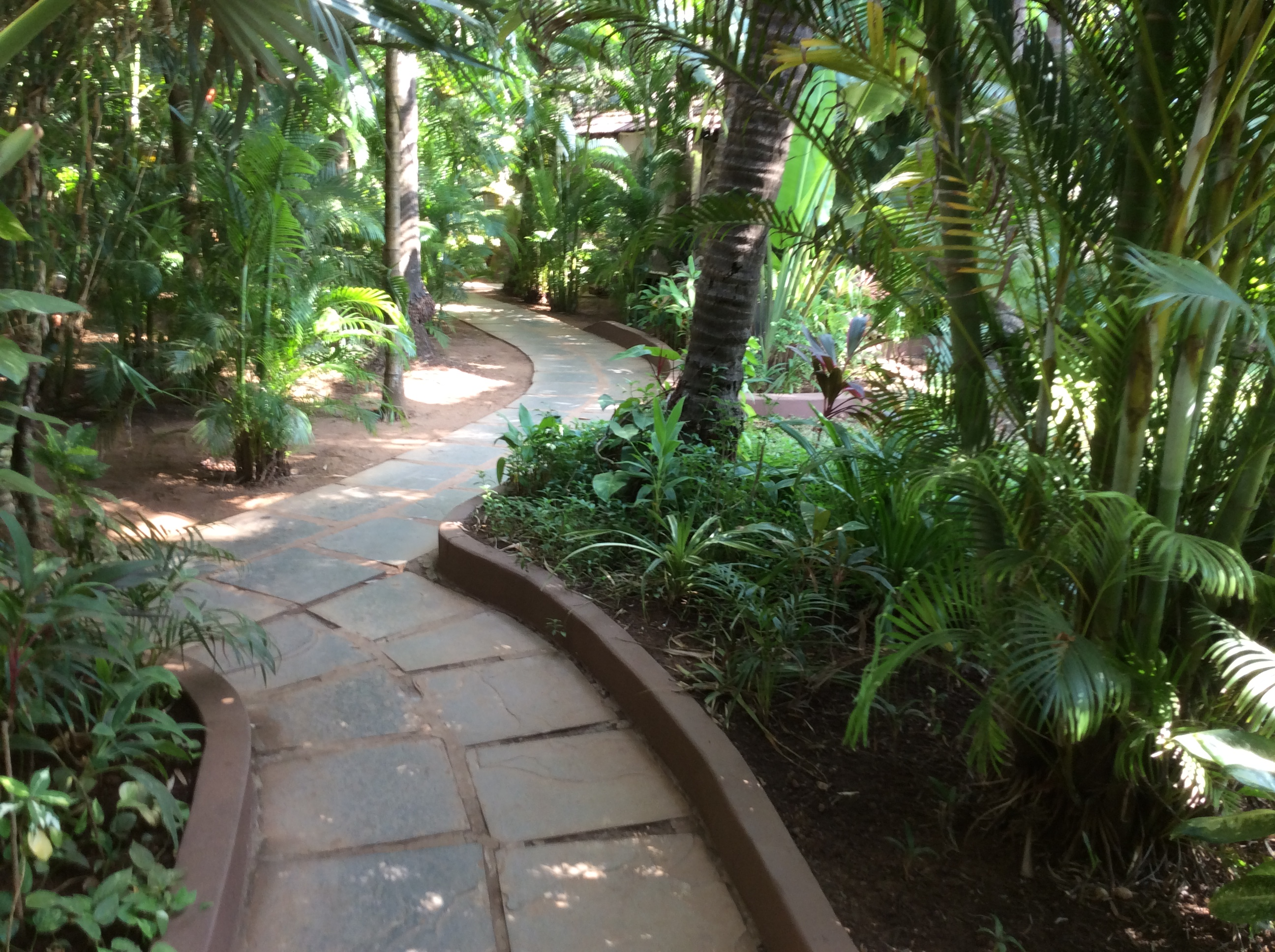 Ashiyana yoga center Goa
